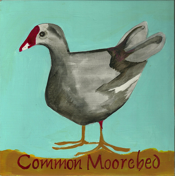 Common-Moorebed-700