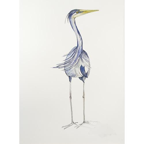 Bird-Apr15-4-500x500